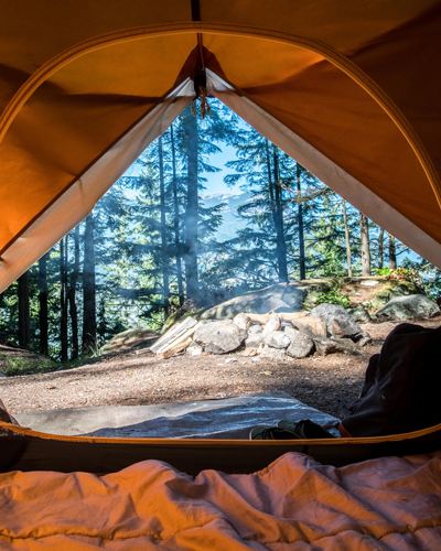 Looking at the forest through an open tent flap