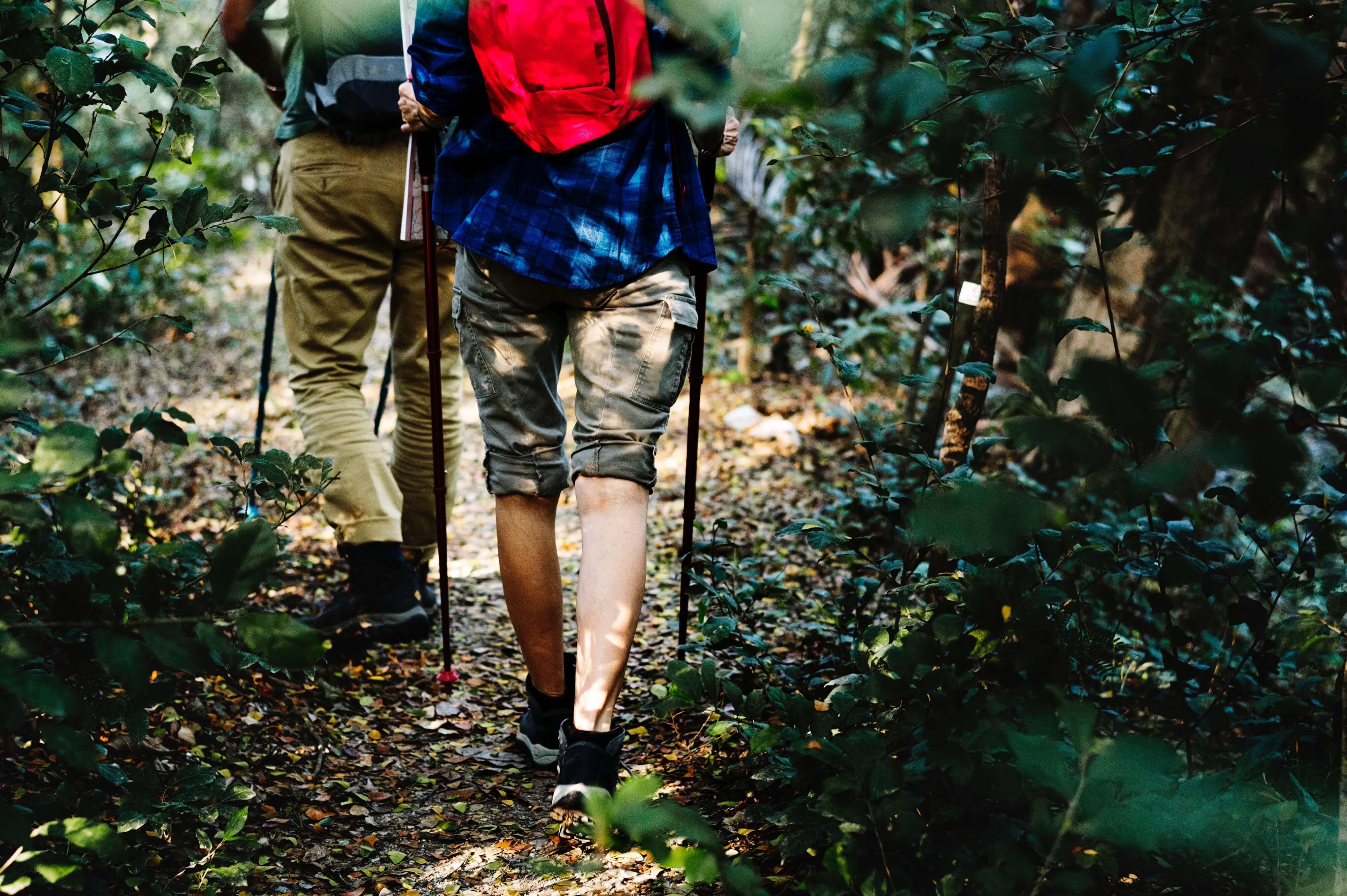 hiker with red backpacking walking through the forest